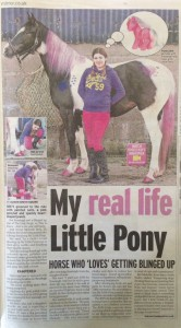 make up for horses, Sunday Mirror