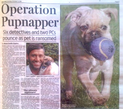 Kidnapped Dog