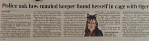 Tiger mauls keeper report