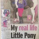 make up for horses, Sunday Mirror